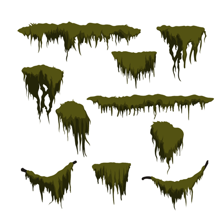 Green swamp moss on white background. Forest grass in cartoon style. Isolated design element. Game sprite. Marsh plants Illustration
