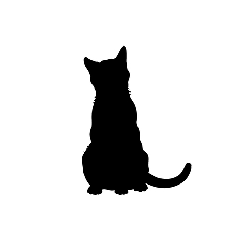 Black silhouette of cat. Isolated image of kitty. Farm pet.