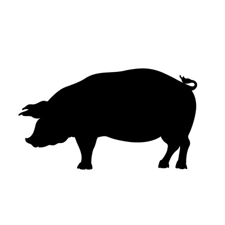 Black silhouette of pig. Isolated image of farm boar. Domestic animal icon. Ilustrace