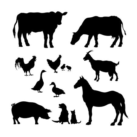 Sagome nere di animali da fattoria. Set di icone di bovini domestici. Immagine isolata di bestiame rurale e pollame. Mucca, cavallo, maiale e capra. Vettoriali
