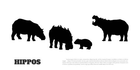 Black silhouette of hippopotamus family on white background. Isolated scene with hippos.  Landscape of wild african animals 向量圖像