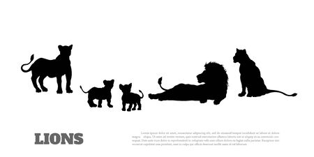 Black silhouette of  lion pride on white background. Isolated scene of savannah wildlife.   Landscape of wild african animals. Vector illustration