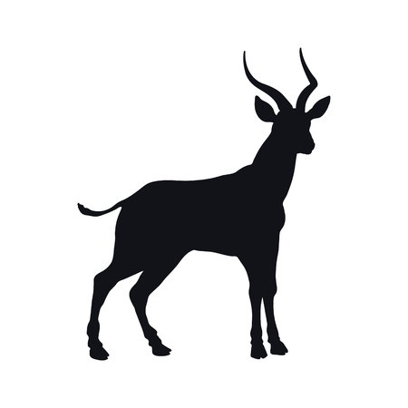 Black silhouette of african gazelle