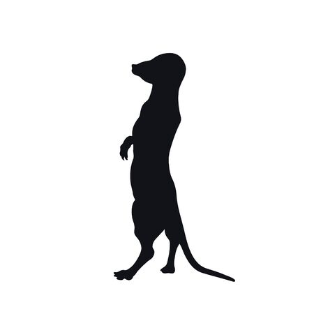 Black silhouette of african meerkat on white background. Isolated mongoose icon. Wild animals of Africa. Savannah nature Illustration