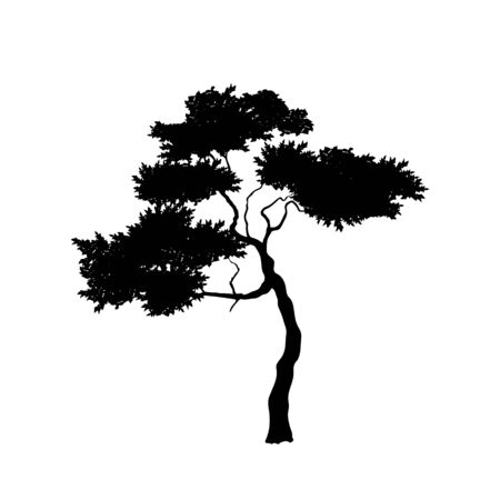 Black silhouette of african tree on white background. Isolated image of savannah nature. Forest landscape of Africa. Acacia icon 向量圖像
