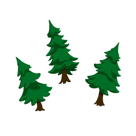 Isolated image of firs. Green pine in cartoon style. Forest tree on white background. Isometric view. Vector illustration