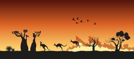 Black silhouettes of Australian animals in bushfire. Pray for Australia. Scene of forestfire with kangaroo, koala and parrots. Vector illustration Ilustração