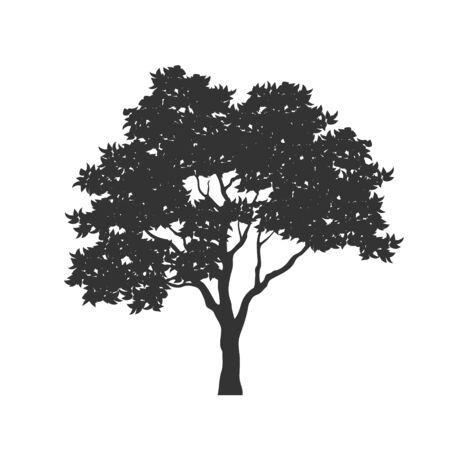 Black silhouette of tree. Forest plant isolated image. Nature landscape element. Vector illustration
