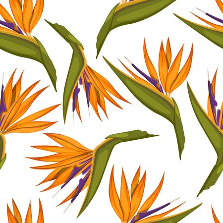 Tropical flowers seamless pattern. Fabric print. Exotic textile design. Orange floral plant in cartoon style. Jungle flora on white background