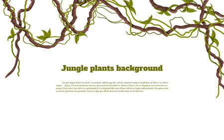 Jungle plants background. Tropical frames. Isolated exotic flora. Greeting card borders. Rainforest liana. Design elements. Vector illustration