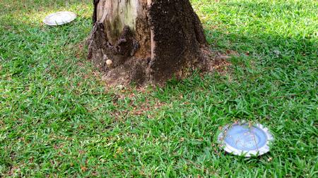 foot light under the tree Foto de archivo - 100631185