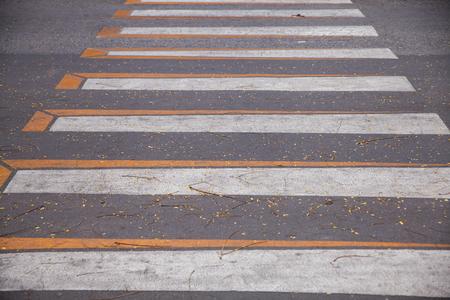 White crosswalk on asphalt road at thailand