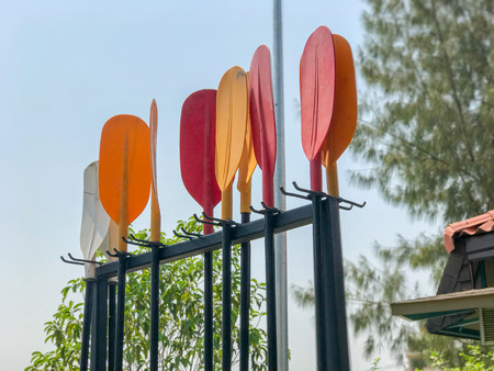outdoor row of Plastic Paddle of boat