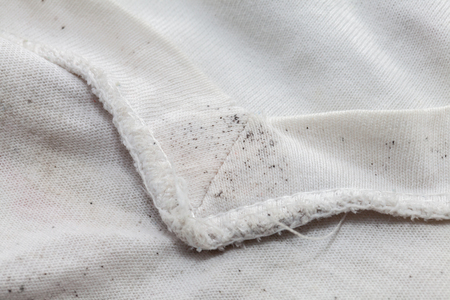 close up of moldy of the dirty cloth Banque d'images