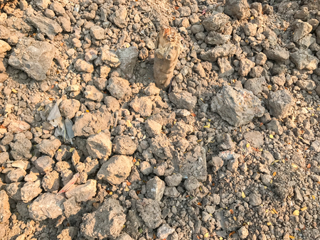 dry soil in construction site at thailand Stock Photo