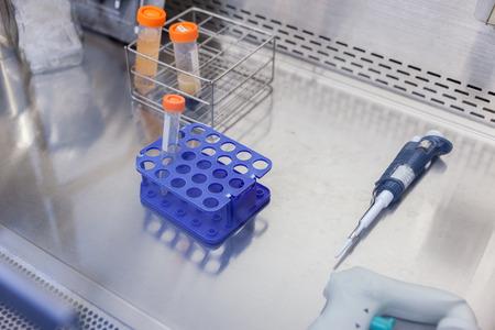 Tube à centrifuger en plastique avec capuchon dans la hotte Banque d'images