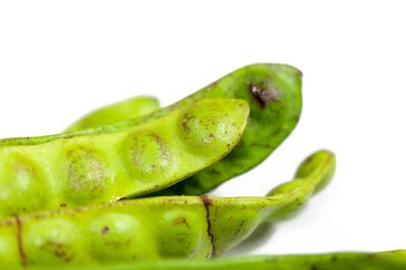 Parkia speciosa bean or bitter bean on white background Imagens