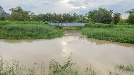pond with bridge in local country at thailand
