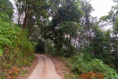 dirty dirt road through the mountain at Doi Mon Jong, Chiang Mai, Thailand