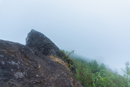 high cliff rock with heavy fog, cloud and mist in mon jong doi at Chaing mai, Thailand