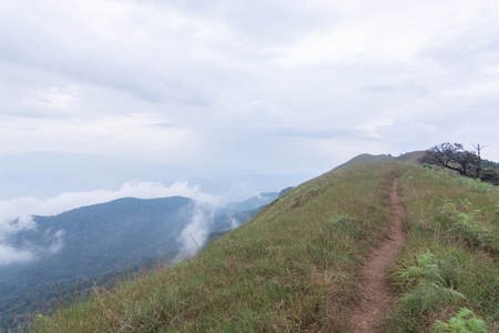 green grass field on Top of mountain in Mon jong doi, Chiang Mai, Thailand Stockfoto