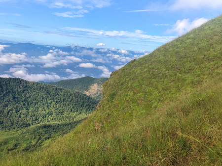 beautiful view and green grass on top of the mon jong mountain at Chaing mai, Thailand