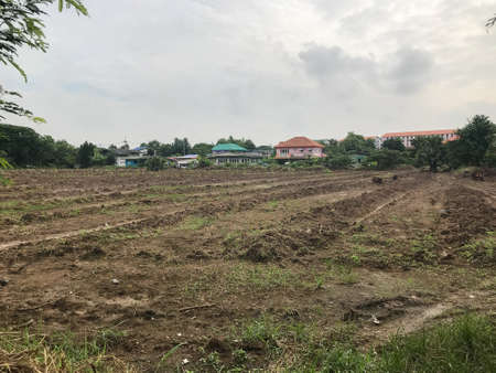 outdoor empty land for sale at Thailand