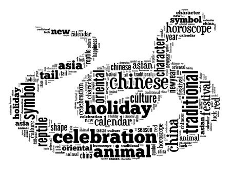 Year of Snake info-text graphic and arrangement concept on white background  word cloud  photo