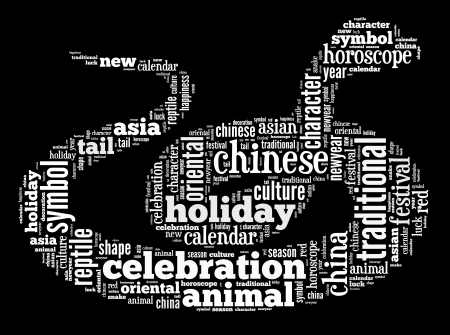 Year of Snake info-text graphic and arrangement concept on black background  word cloud  photo