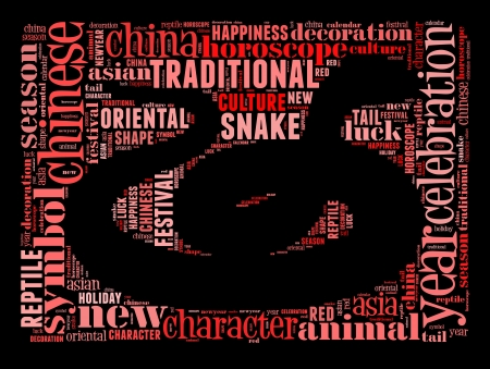 snake charmer: Year of Snake info-text graphic and arrangement concept on black background  word cloud  Stock Photo