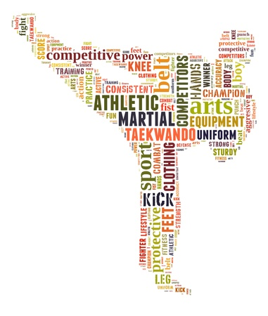 Martial arts info-colorful text graphic and arrangement concept on white background  word cloud