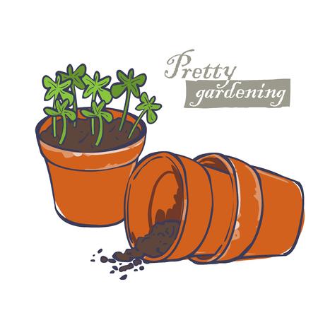 flowerpots: flowerpots for plants with soil and plants , ceramic planter
