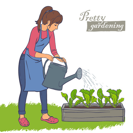 spinach: woman watering plants in the flowerpot, lettuce, spinach