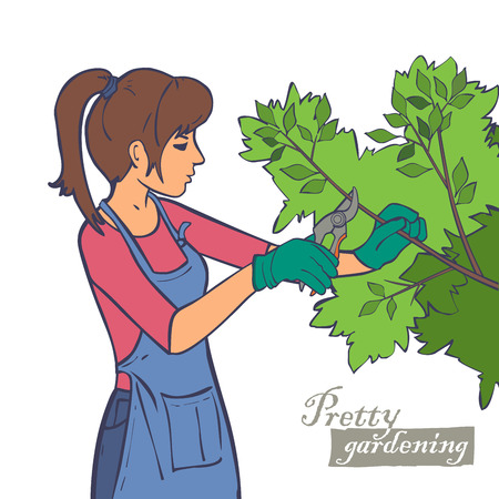 pruning: Woman in garden pruning shears branches, trees, bushes