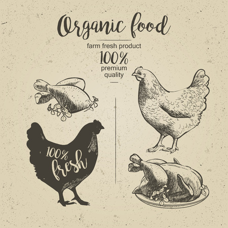roasted: Chicken. Roasted Chicken. Vector illustration in vintage style