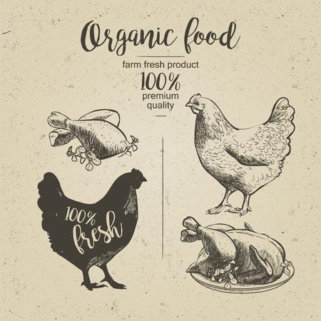chicken dish: Chicken. Roasted Chicken. Vector illustration in vintage style