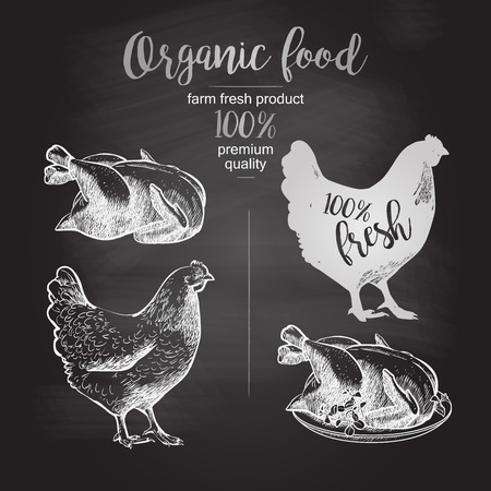 Drawing on the blackboard. Roasted Chicken. Design for farming industry, original packaging and other types of bio product business. Vector illustration in vintage style Ilustrace