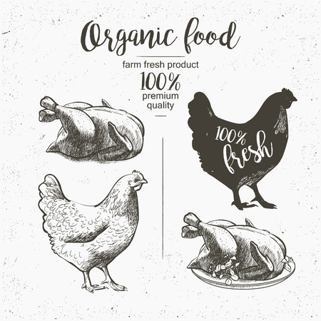 Chicken. Roasted Chicken. Vector illustration in vintage style Stok Fotoğraf - 58551246