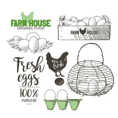 Eggs in the vintage antique-french-country wire egg gathering basket Stock Illustratie