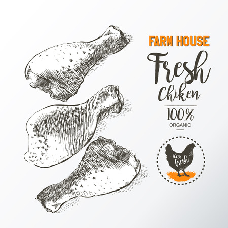 drown: Fresh chicken legs. Top view. Isolated on a white vintage vector isolated sketch hand drown Stock Photo