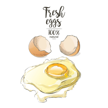 raw chicken: Egg a cracked egg with an egg shell, egg yolk and egg white.