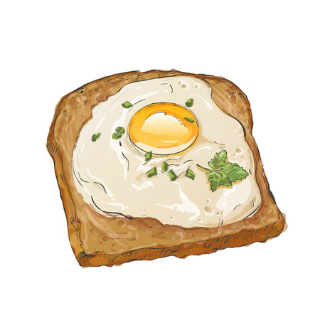 toasted bread: bread and fried egg Illustration