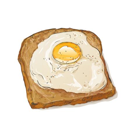 fried egg: bread and fried egg Illustration