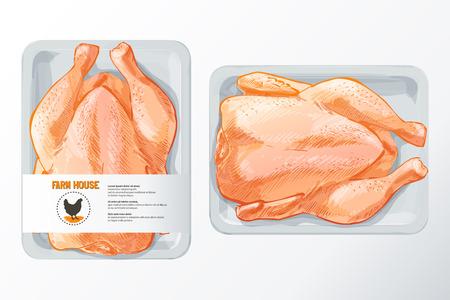 polystyrene: chicken meat vector Illustration