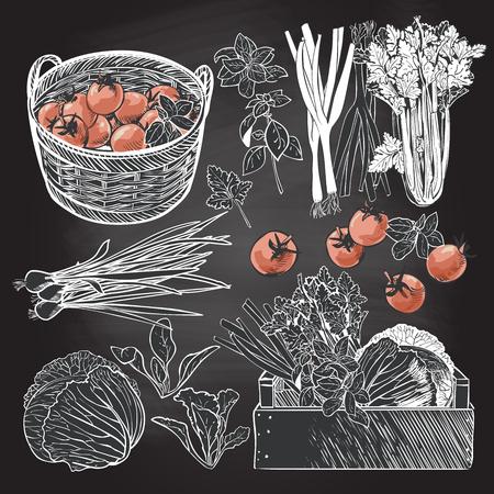 Caisse en bois pleine de légumes et d'herbes fraîches Banque d'images - 75673546