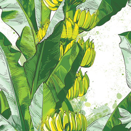 Vector tropical banana leaf, fruits texture  イラスト・ベクター素材