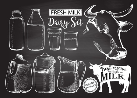 bottles and jars gallon with fresh milk products can container for milk isolated on chalk drawing on the blackboard vector illustration