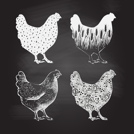 Chicken logo. Vector illustration in vintage style  イラスト・ベクター素材