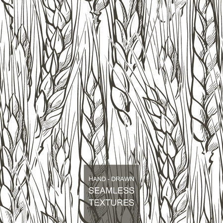 Vector seamless pattern field of wheat. Hand drawn engraving illustration of Countryside Ilustrace