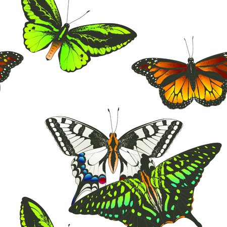 Set of vector tropical butterflies. Seamless pattern. Hand drawn watercolor isolated illustration.  イラスト・ベクター素材